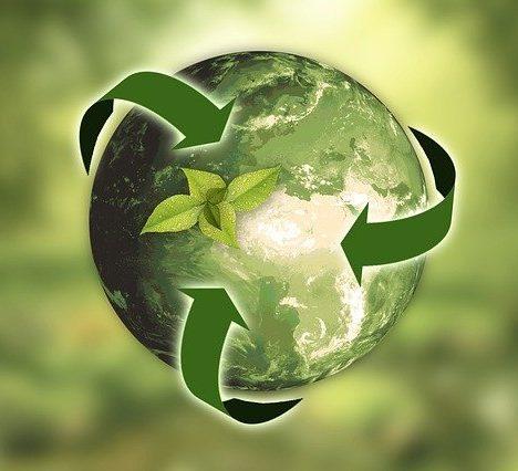 Comment choisir votre source d'énergie verte pour votre transition écologique?